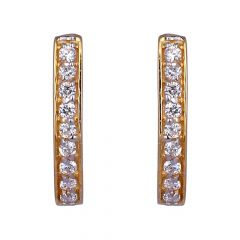 Curved Design Studded With CZ Hoop Earrings-601-A2348